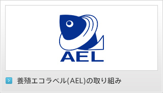 AEL認証物の取り組み
